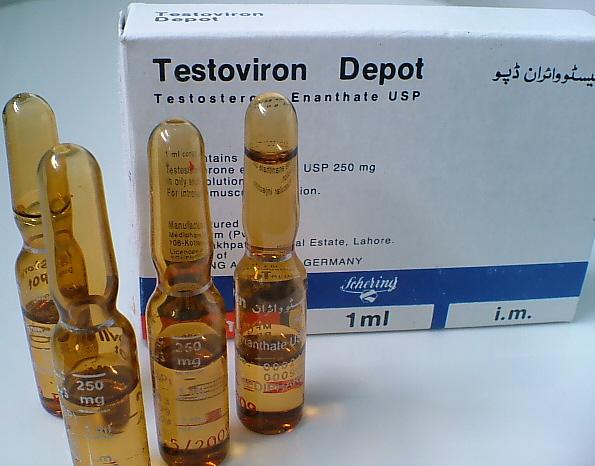 Profilo del Testosterone 1